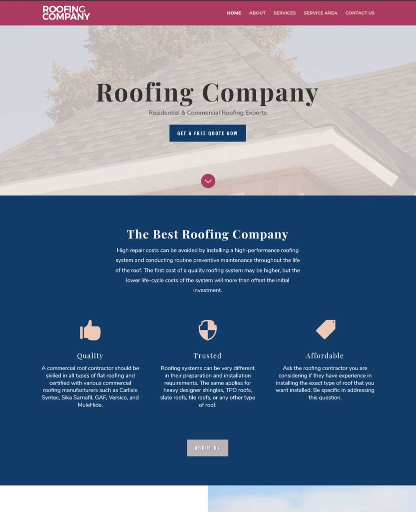 roofer-professional